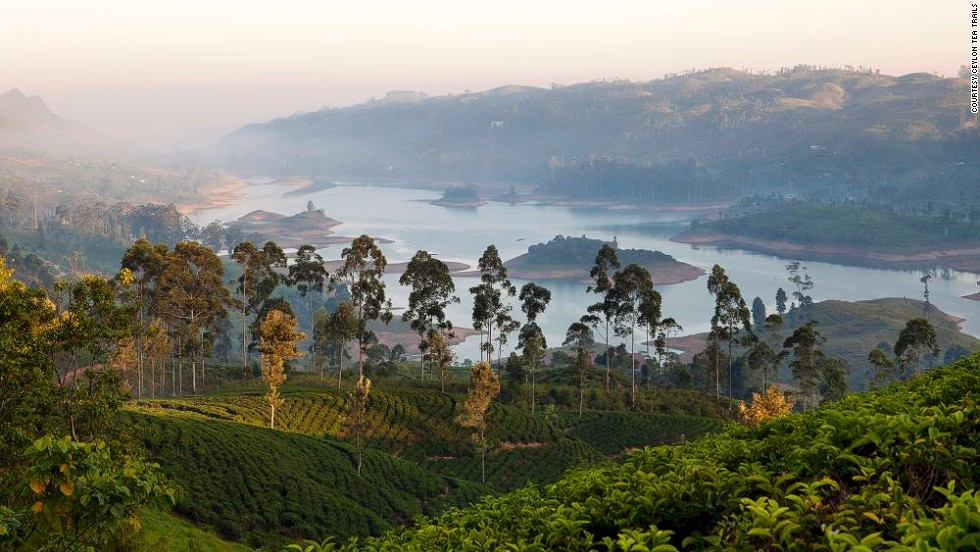 Sri Lanka's tea industry started with one camellia sinesis plant brought from China in 1824 by the British. It has since grown into a $1.5 billion export industry -- the world's second biggest by value. The country's tea plantations offer incredible scenery. Pictured are tea fields 1,300 meters above sea level among the fertile south central Bogawantalawa Valley.