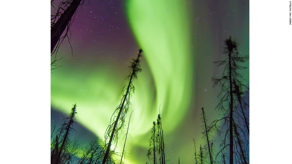 When highly charged particles from the solar wind interact with atoms of oxygen and nitrogen at high altitudes the aurora (northern lights) is born. The spectacle transcends science, luring locals and visitors alike into the bone-chilling northern nights to marvel at the magical displays.