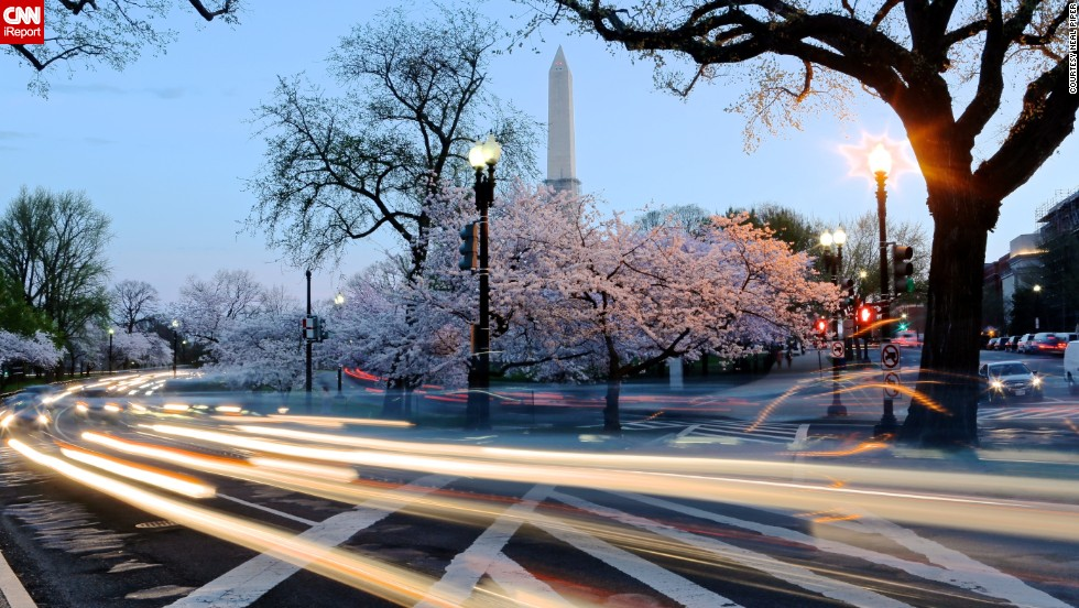 "The National Cherry Blossom Festival starts on March 20 in Washington. Every year millions of pink petals transform the city's landscape, beckoning the start of spring. If you can't make a trip to the capital to see these delicate flowers bloom, enjoy their beauty through these photos taken over the years by <a href=""http://ireport.cnn.com/docs/DOC-955495"">CNN iReporters</a>."