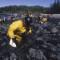 exxon oil 06
