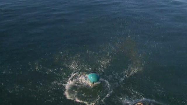pmt buoys luca_00012708.jpg