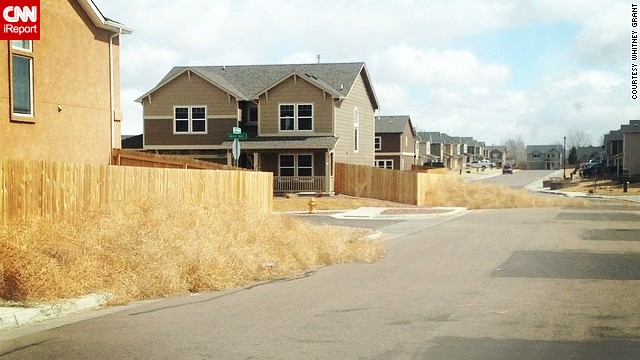 Whitey Grant's neighborhood is littered with tumbleweeds