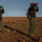 Namibia black rhino guides