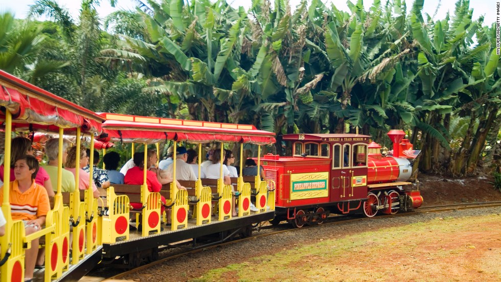 "Pineapple Express train rides are available at the <a href=""http://www.dole-plantation.com"" target=""_blank"">Dole Plantation </a>in Wahiawa, on Oahu."