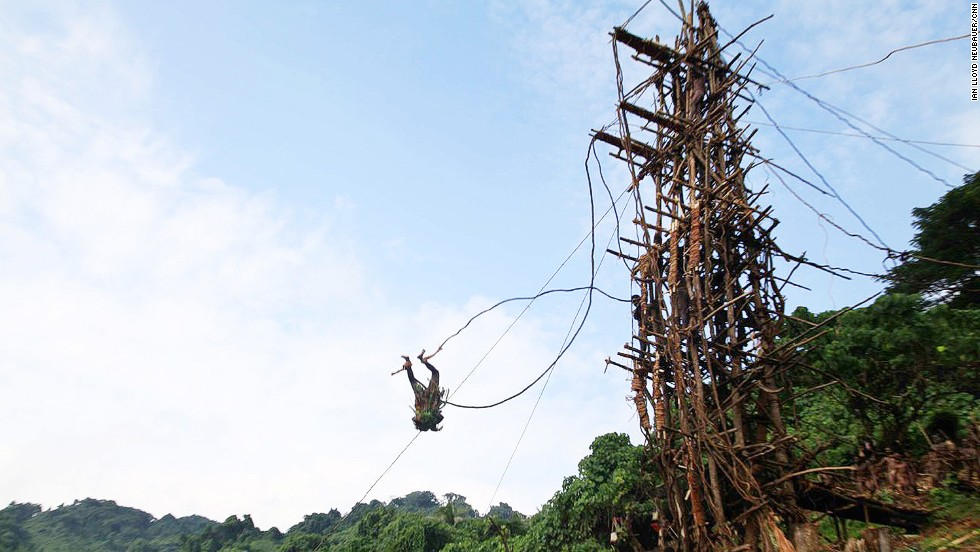 Boards on the towers used by Vanuatu's land divers are designed to snap and hinge downward to absorb much of the divers' G-force. The wood is freshly cut to ensure strength, while the vines are carefully measured and matched to the each diver's weight and height.