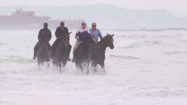 cnnee ag march 2014 horses training in water_00000716.jpg