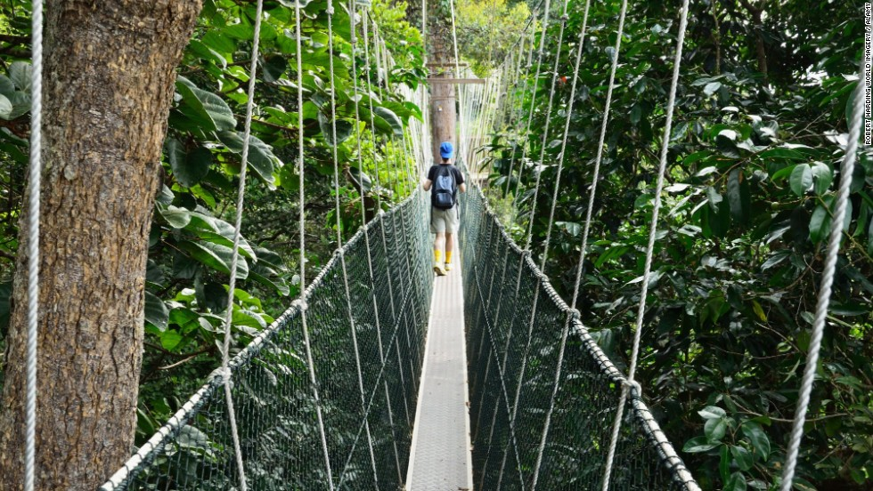 The Taman Negara Canopy Walkway in Kuala Lumpur, Malaysia, is the world's longest canopy walkway.