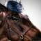 horses in hats dark blue