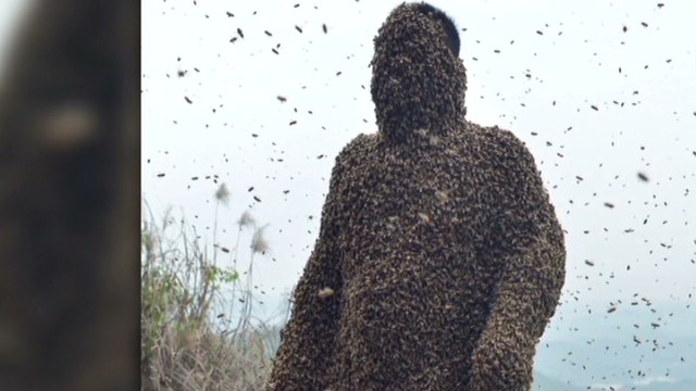 cnni vo china man covered in bees _00002324.jpg
