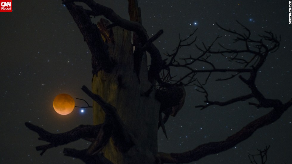 "<a href=""http://ireport.cnn.com/docs/DOC-1120903"">Abe Blair</a> says it was cloudy when he got up to take pictures of the blood moon, but he decided to try anyway. ""I am glad I trusted my gut feeling,"" he said. Blair had picked this tree out earlier in the day, but he had to hike for about 15 minutes in the dark to get there. He shot a two-second exposure for the moon and a 20-second exposure of the tree, and then combined the images in Photoshop."