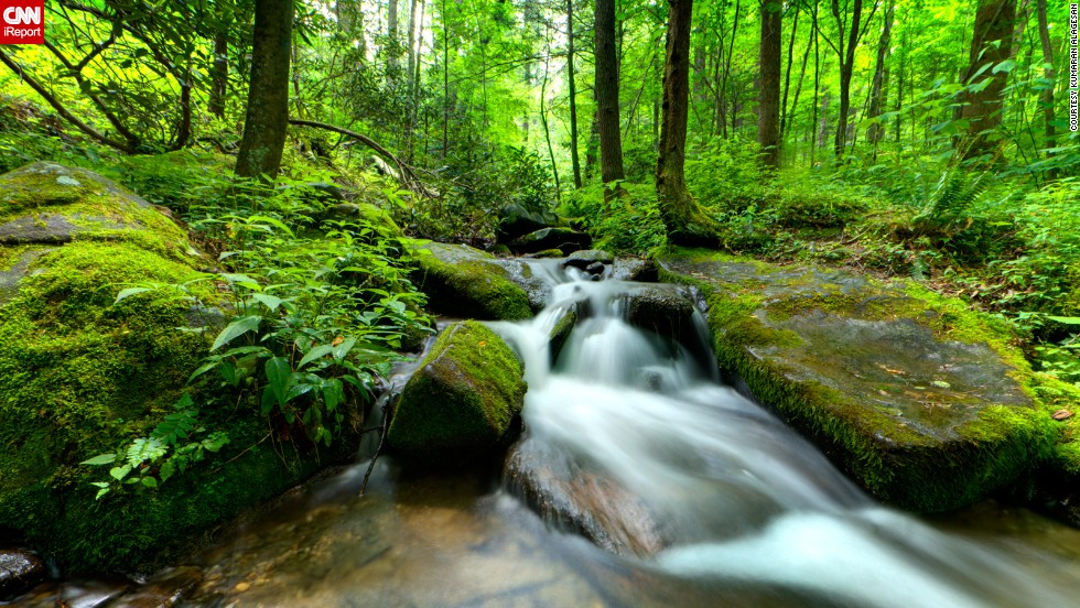 """On the border of North Carolina and Tennessee, <a href=""""http://www.nationalparks.org/explore-parks/great-smoky-mountains-national-park"""" target=""""_blank"""">Great Smoky Mountains</a> National Park is America's most visited national park, drawing more than 200,000 visitors per year to admire its waterfalls, animal and plant life and, of course, mountains. """"The scenery around was a treat to the eyes. Just like, someone spilled shades of green all around but somehow made it perfect,"""" <a href=""""http://ireport.cnn.com/docs/DOC-802445"""">Kumaran Alagesan</a> said of the Grotto Falls trail."""