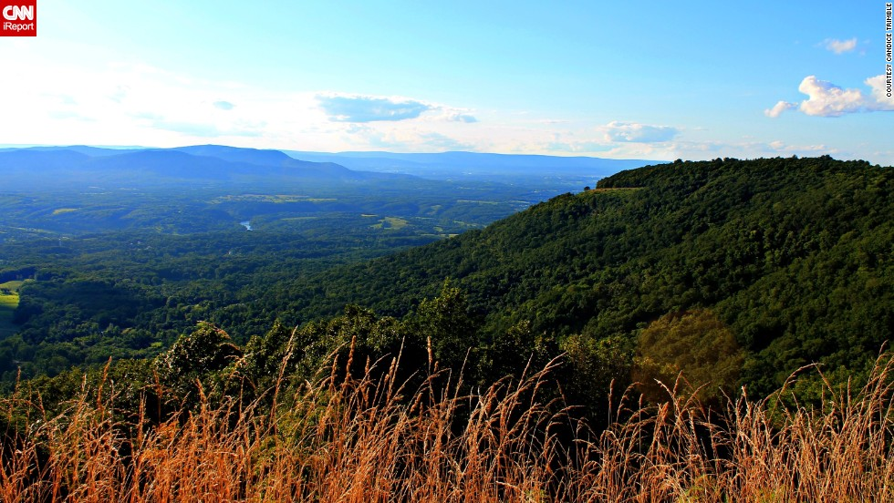 "<a href=""http://www.nationalparks.org/explore-parks/shenandoah-national-park"" target=""_blank"">Shenandoah National Park</a> in Virginia contains 101 miles of the Appalachian Trail and is home to a variety of wildlife such as deer, black bears and wild turkeys. Nature photographer <a href=""http://ireport.cnn.com/docs/DOC-1042346"">Candice Trimble</a> spends a lot of time at this park because of all there is to see and experience."