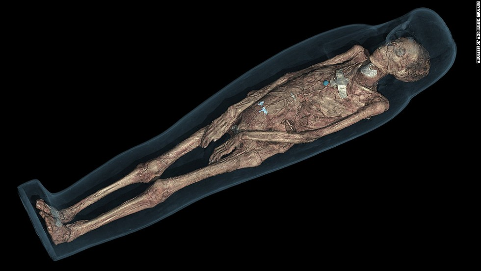 CT scans have also enabled the museum team to establish Tamut's approximate age at the time of her death (which they place between 30 and 50) by allowing them to examine her pelvis.