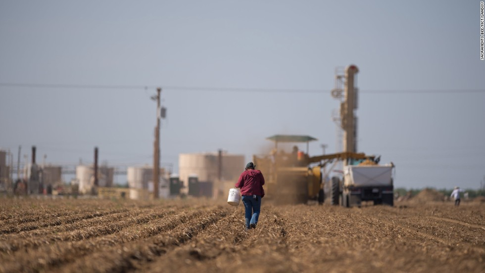 A fracking facility and its working wells serve as a backdrop to field workers picking potatoes in Shafter, California, in June 2013.