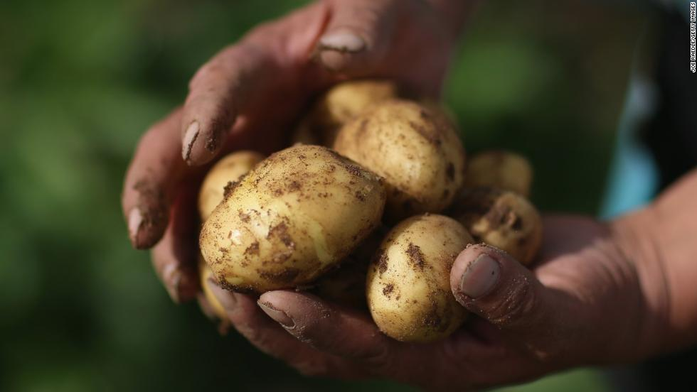 Potatoes dropped off the list, but the EWG report found that the average potato had more pesticides by weight than any other item in the produce list.
