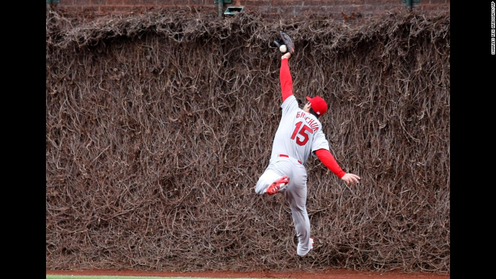 St. Louis Cardinals outfielder Randal Grichuk is unable to catch a deep fly ball during a Major League Baseball game at Chicago's Wrigley Field on Friday, May 2. The Cubs won the game 6-5.