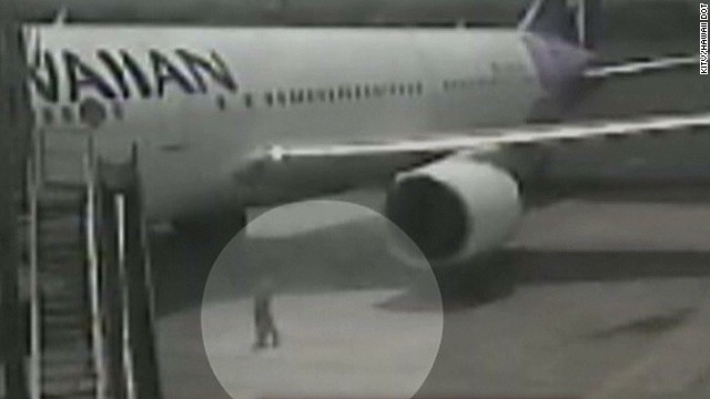 erin obrien stowaway video in maui_00004311.jpg