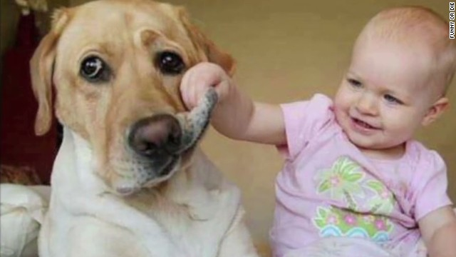 fod youre welcome episode 12 dog cats and kids_00004330.jpg