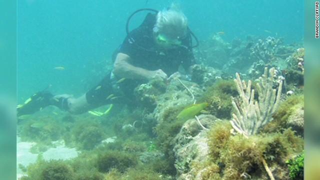 Could sunken wreck be Columbus' ship?