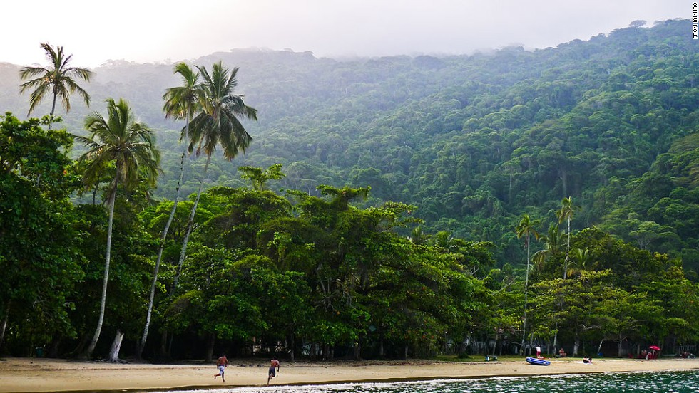 Ilha Grande is a great place to see Brazil's Atlantic Forest (Mata Atlantica), a World Biosphere Reserve that's home to many endangered species.