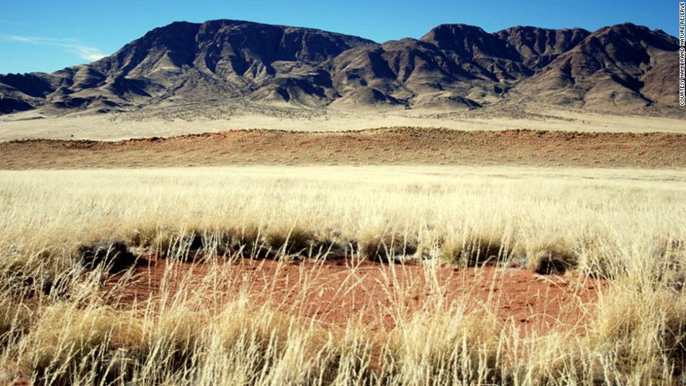 "Known as ""fairy circles,"" these dots have posed a mystery to scientists, who have yet to prove what causes them to pop up on the landscape."
