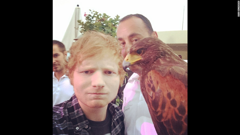 "Singer Ed Sheeran poses with a feathered friend in this photo posted Thursday, May 22 <a href=""http://instagram.com/p/oTzUhmEpNT"" target=""_blank"">on his Instagram account</a>. ""Selfie with a falcon coz I'm about that life,"" he wrote."