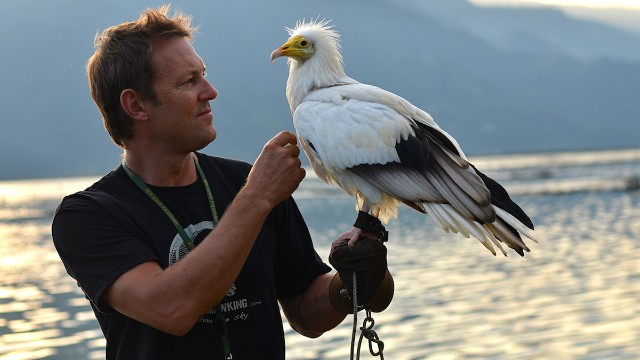 Scott Mason, founder of Nepal's Parahawking Project, uses two Egyptian vultures for flights.