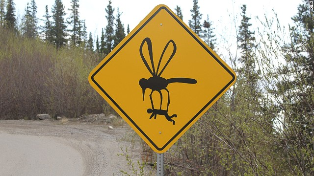 Witty signs keep drivers focused on tricky Alaskan road