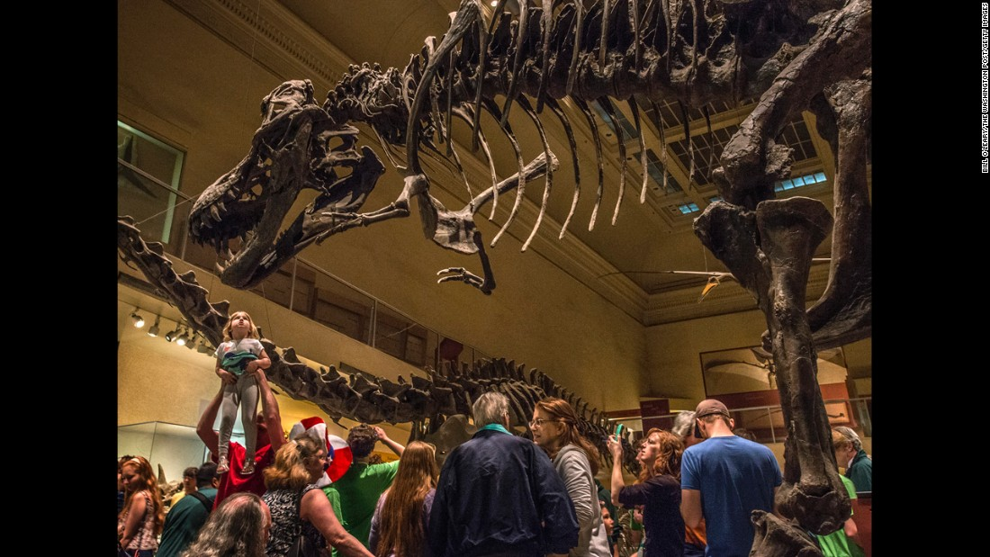 The Smithsonian National Museum of Natural History in Washington tied for third most-visited, with 6.9 million visitors.