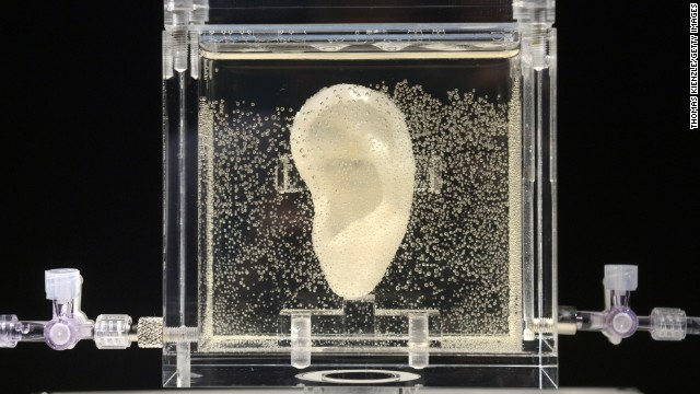 Art imitates life: Artist bioengineers replica of Van Gogh's ear