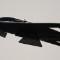04 stealth bomber 0610