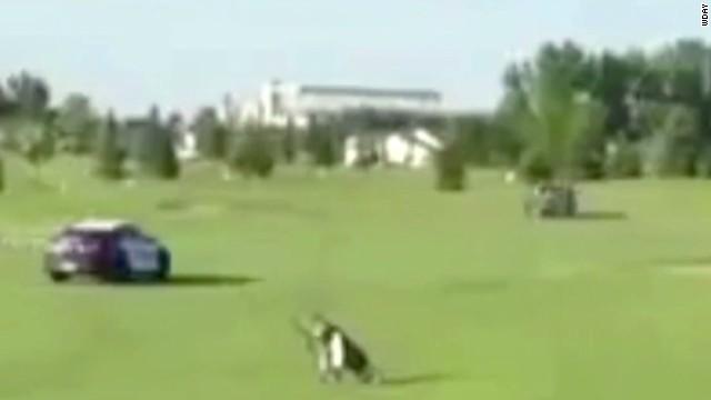 pkg golf course police chase_00002109.jpg