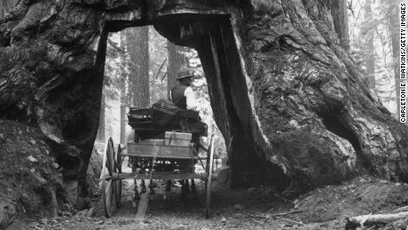 150 years of Yosemite