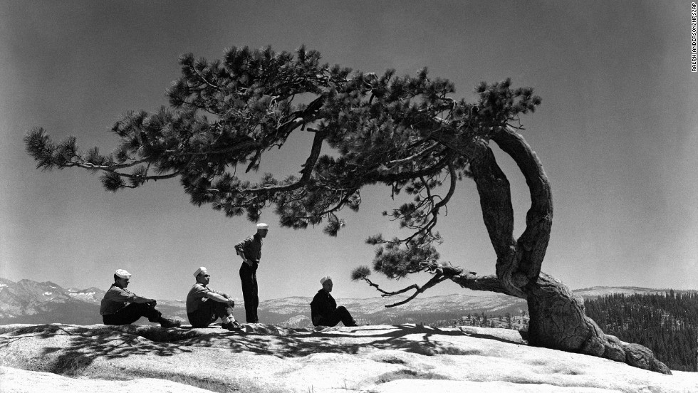 "Sailors gather near a tree on the park's Sentinel Dome on July 24, 1944. The Navy took over the<a href=""http://www.nps.gov/yose/historyculture/navy-hospital.htm"" target=""_blank""> Ahwahnee Hotel </a>during World War II and used it as a convalescent hospital."