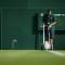 Wimbledon paint
