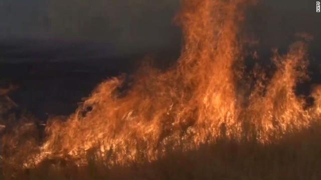 dnt california napa butts fire growing_00001504.jpg