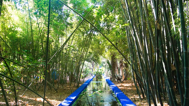 Green space: Jardin Majorelle.