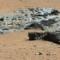Iron Meteorite on Mars