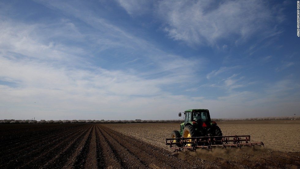 A tractor plows a field in Firebaugh, California, in February 2014. Almond farmer Barry Baker had 1,000 acres -- 20% -- of his almond trees removed because he didn't have access to enough water to keep them alive.