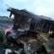 01 malaysia airline crash site
