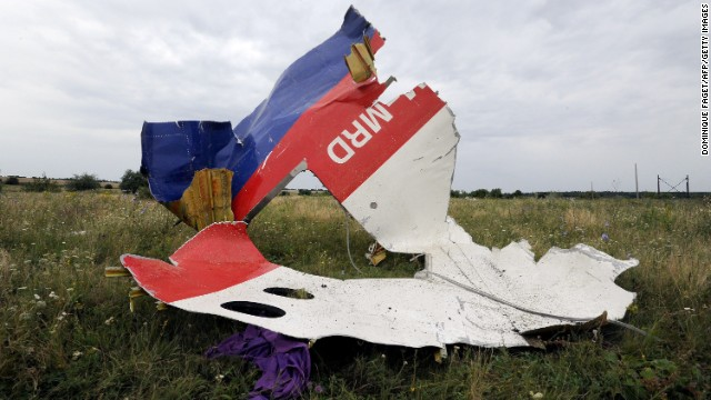 A piece of Flight 17 lies in a field on July 18.