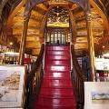 Coolest bookstores lello
