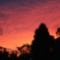 Sydney sunset 3