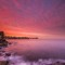 Sydney sunset 5