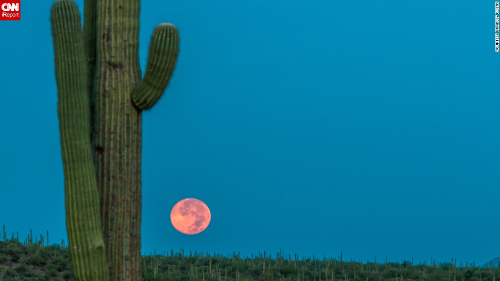 "<a href=""http://ireport.cnn.com/docs/DOC-1160275"">Bradley Owens</a> woke up at 3 a.m. to execute this colorful photo of the supermoon in Tucson, Arizona, on Sunday. ""The timing was perfect with the sun rising behind me with a few mountains to shield the direct sunlight,"" he said. ""This helped the sky be as blue as it was with the perfect orange glow to the moon itself.  It was much more beautiful in person and very majestic!"""