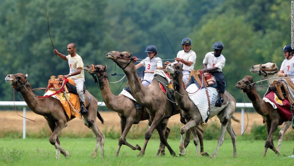 Jockeys ride camels during a race Sunday, August 10, in La Chartre-sur-le-Loir, France. The eight camels, which have never seen a desert, took part in two races of 1,000 meters.