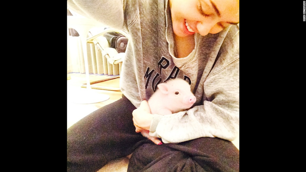 "Pop star Miley Cyrus holds her <a href=""http://marquee.blogs.cnn.com/2014/08/11/miley-cyrus-pink-new-pet/"">new baby pig,</a> Bubba Sue, in this selfie <a href=""http://instagram.com/p/rk2W9pwzCh/"" target=""_blank"">posted to Instagram</a> on Monday, August 11. ""Just took a 3 hour nap w bubba sue! she's such a goooood baby,"" Cyrus wrote."