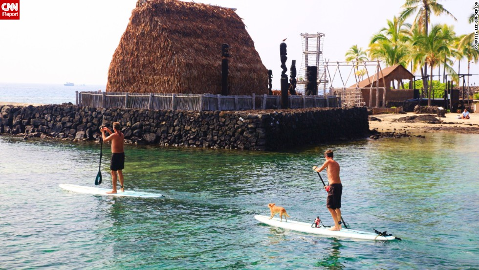 "<a href=""http://ireport.cnn.com/people/Kalalau123"">Paddle boarding</a> is a popular pastime on the Big Island. Here, two adventurers and a four-legged companion drift gently through the calm waters of Kailua Bay in Kona."