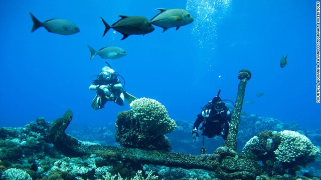 Diving in the Ducie Atoll, Pitcairn Islands