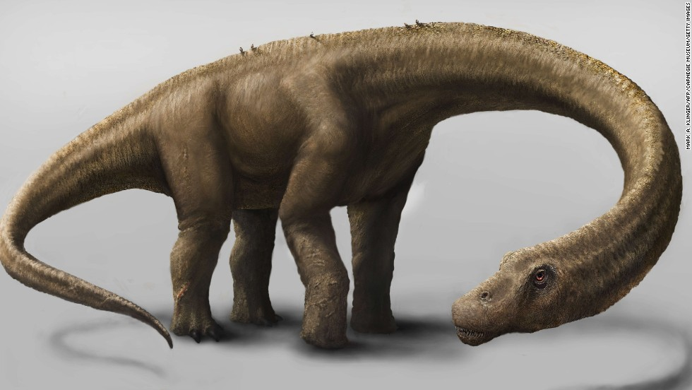 Paleontologists estimate the Dreadnoughtus schrani specimen unveiled Thursday was about 85 feet long and weighed about 65 tons.<br />